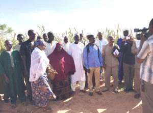 National Agricultural Research System partners and farmers attend a field day at Sadore, Niger. Photo: ICRISAT