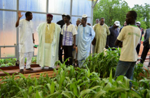 His Excellency Mr Albade Abouba visiting ICRISAT. Photo: ICRISAT