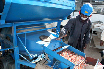 Staff at the groundnut processing unit. photo: ICRISAT