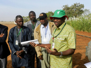 Pearl millet breeding technician, Mr Hama Adamou, flanked by Dr Malick N Ba, ICRISAT-Niger Country Representative (L) and Dr Hamidou Falalou, Head Regional Genebank (R).. photo: CT Hash, ICRISAT