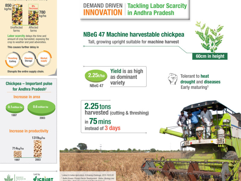 Tackling Labor Scarcity in Andhra Pradesh