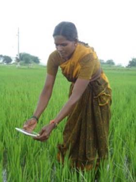 ICT/Digital Agriculture – ICRISAT