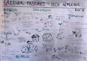 "The scenario ""Greener Pastures"", illustrated by Sidsel Vognsen, UNDP."