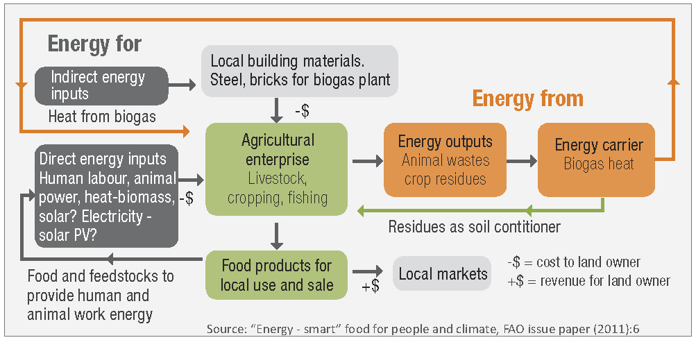 Example of a small-scale, low-input, family-managed, farming enterprise showing energy flows through the system. Outputs are primarily fresh food for local consumption, although they may also be delivered to local processing companies. Along with human and animal power, some direct energy inputs can be obtained from other sources, such as solar thermal and solar PV systems and biogas produced using a simple anaerobic digester.