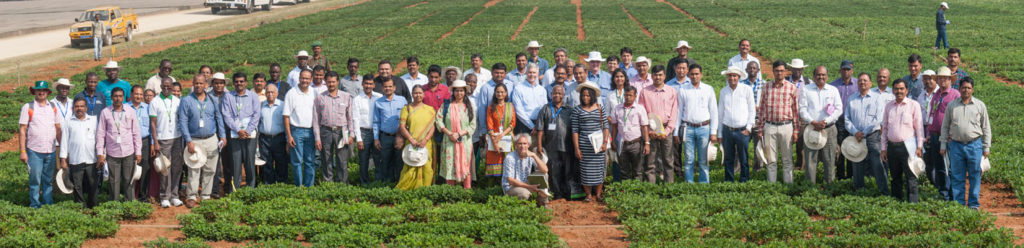 Participants at the Groundnut Researchers' Field Day, ICRISAT-India. Photo: PS Rao, ICRISAT