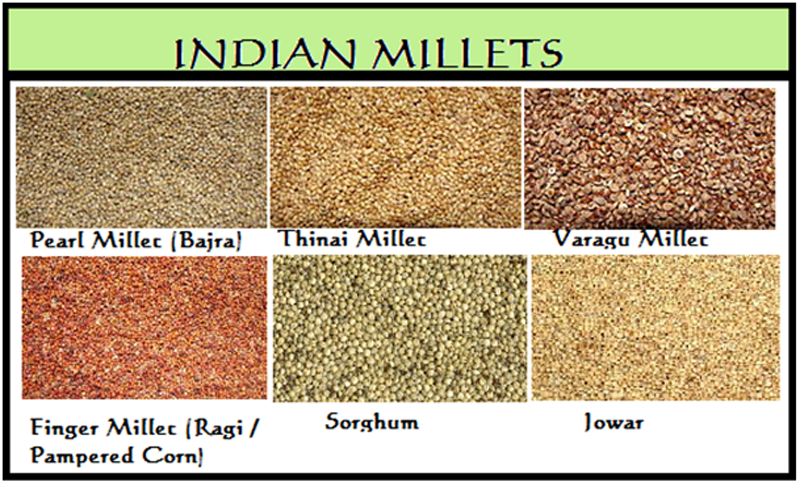 a short history of millets and how we are recognising their