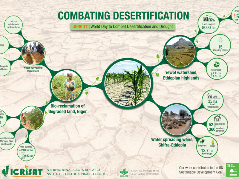 Combating Desertification