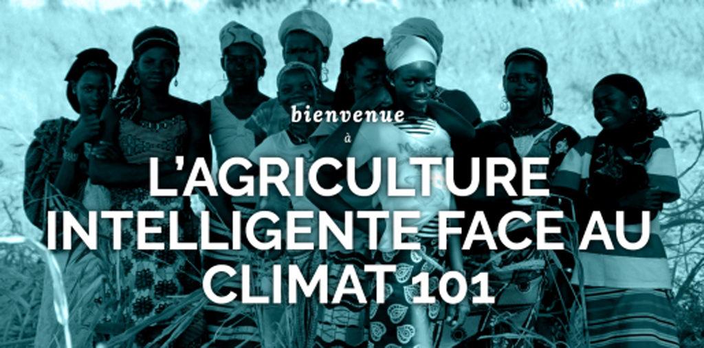 Êtes-vous à la recherche d'une orientation claire pour des initiatives agricoles climato-résistantes?