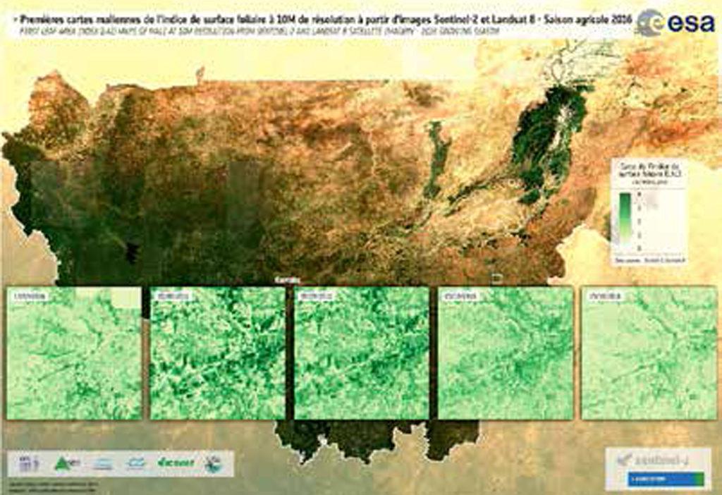 Les premières cartes d'indice de surface foliaire du Mali à 10m de résolution – 2016 (Sen2-Agri). Photo: ICRISAT