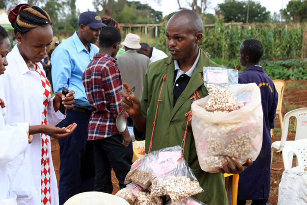 Gichangi Mahinda displays popcorns from maize and sorghum during a farmers' open day at Wambugu Agricultural Training Centre in Nyeri. According to him, before the grains are popped, they must be dried thoroughly to end up with a moisture content of 13 or below. Photo: Joseph Kanyi, Nation Media Group