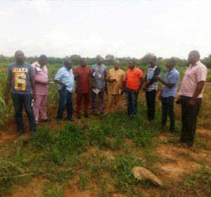 Sorghum field inspection at Del Farm, Enugu. Photo: ICRISAT