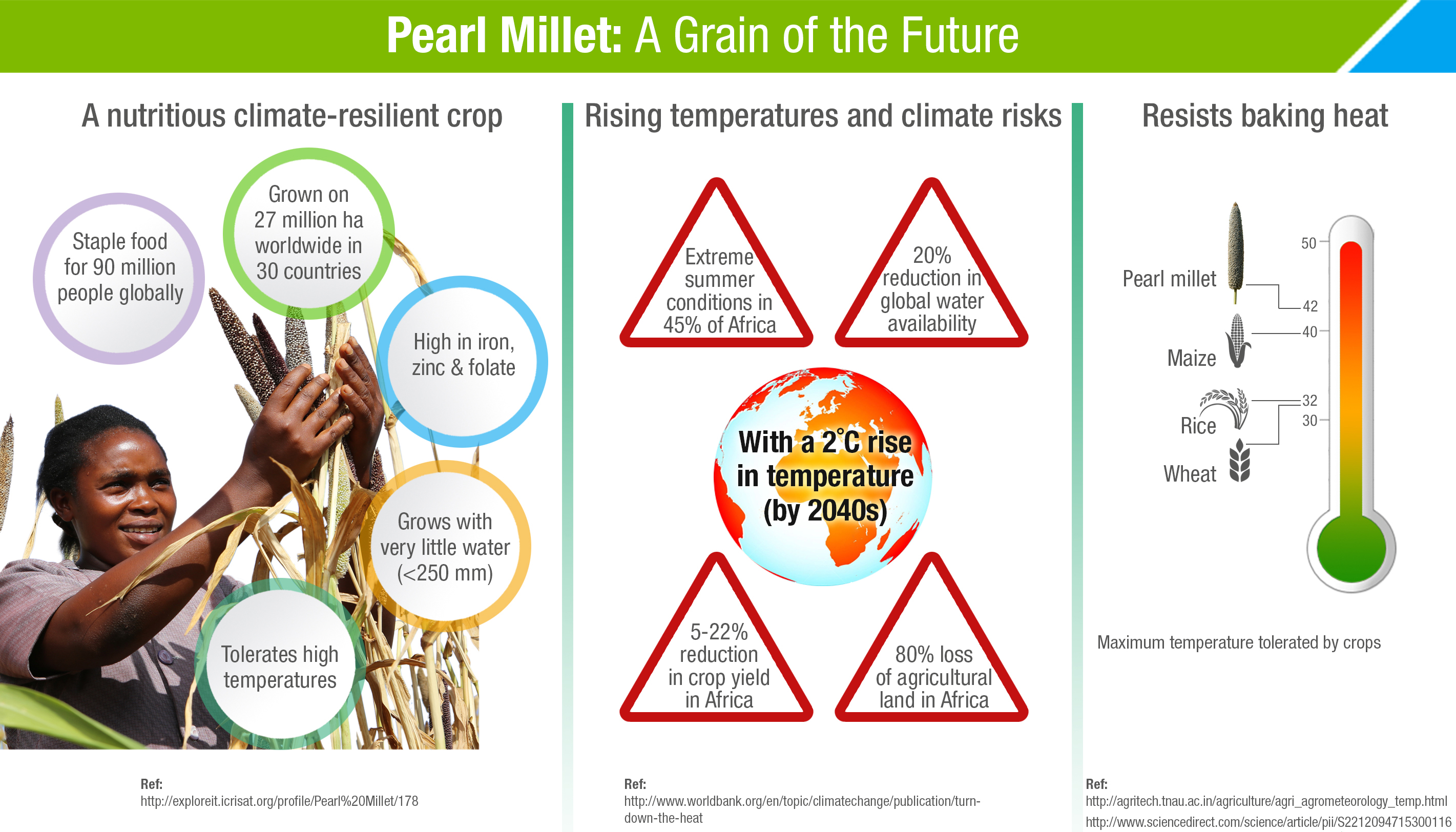 Pearl Millet: A Grain of the Future