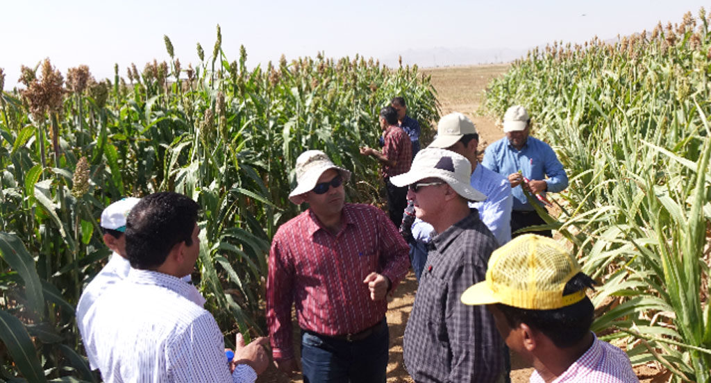 Photo caption: ICRISAT's team interacts with Iranian farmers and scientists to assess the potential for collaborations.