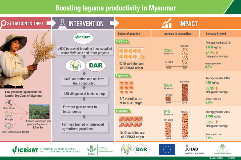 Boosting legumes productivity in Myanmar