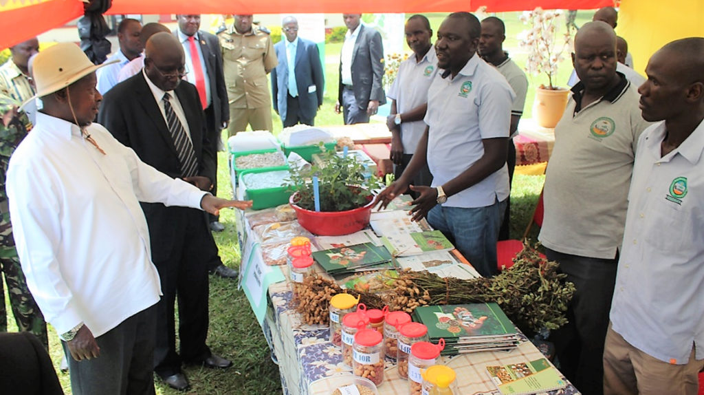 President Yoweri Kaguta Museveni having a discussion at the groundnut stall with David Kalule Okello.