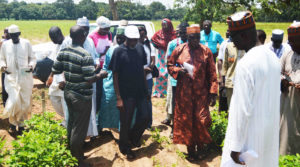 TL-III Candidus A Echekwu (center, in white cap) leads project desk officers to a field visit during Seed Council Training on quality seed production. Photo Credit: Lawal Bawal, USAID