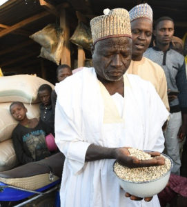 A scene in Dawanu grain market, Kano, Northern Nigeria, the largest cowpea market in the world. Photo: A. Diama