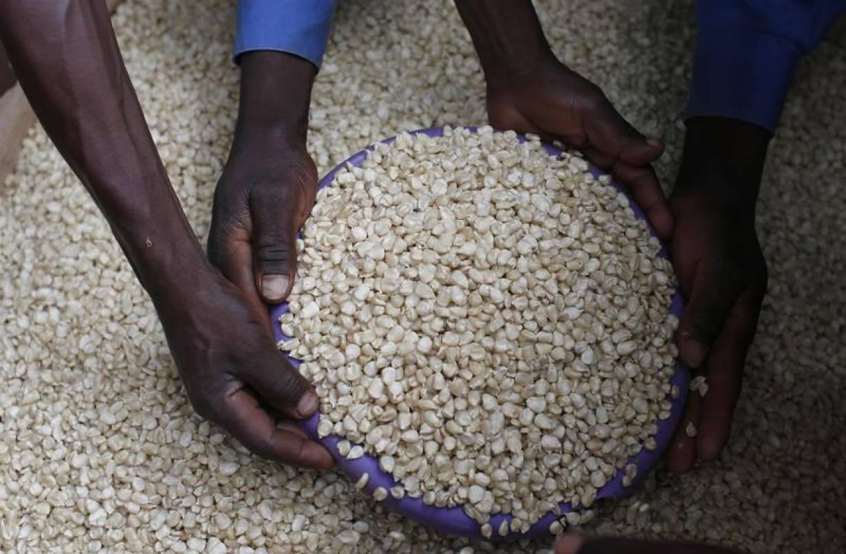 A Malawian trader sells maize near the capital Lilongwe, Malawi February 1, 2016. REUTERS/Mike Hutchings