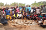 Heap and pit composting trials in Mali. Photo: Z Birhanu