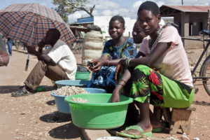 These women in Salima District, Malawi, boil groundnuts athome and carry their tubs to the Siyasiya roadside market. Photo: Swathi Sridharan