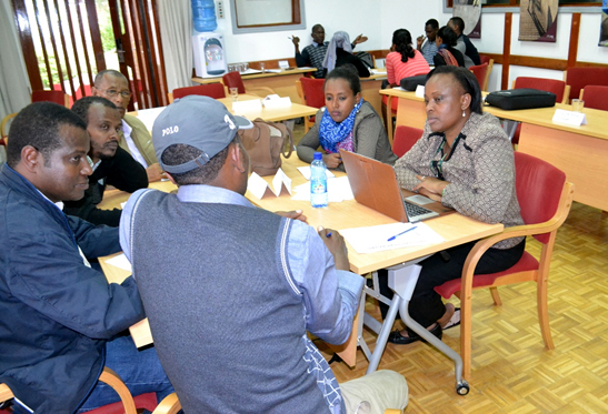 Participants discuss in groups at the stakeholders' feedback meet. Photo: ICRISAT
