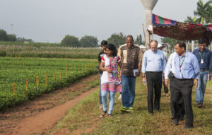 Board members visit demo plots of ICRISAT mandate crops. Photo: PS Rao, ICRISAT
