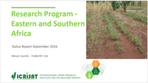 research-program-eastern-southern-africa