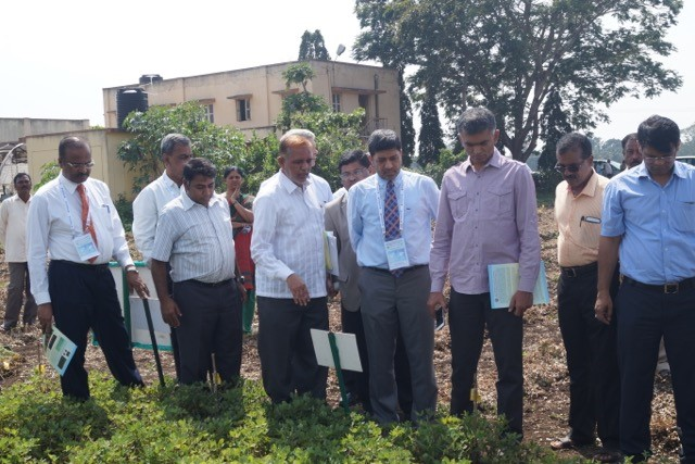 Mr Byre Gowda visited the trial plots of molecular breeding lines in groundnut at the University of Agricultural Sciences-Dharwad, Karnataka. Photo: ICRISAT