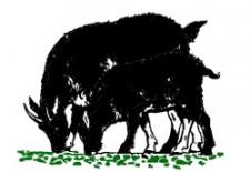 goat3v2