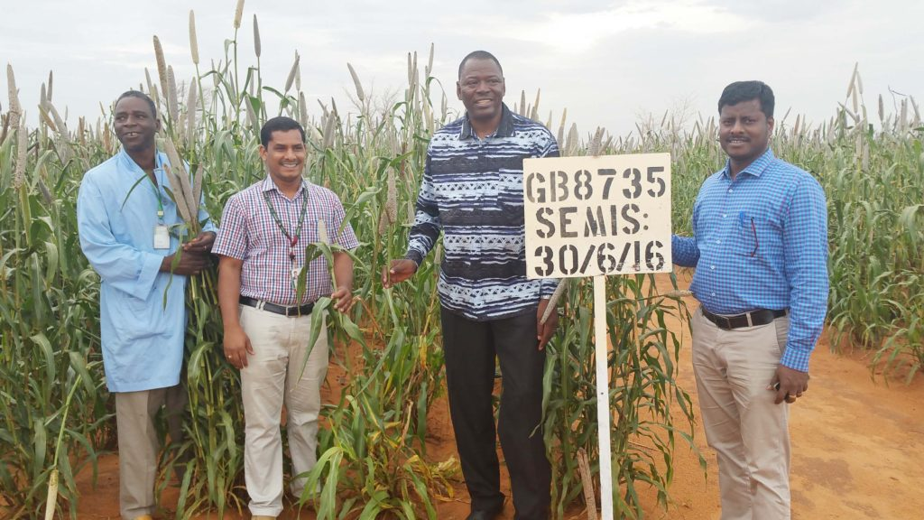 (L to R) Mr Hamadou Adamou, research technician, Dr Gangashetty, Dr Tabo and Dr Govindaraj at the demo plots. Photo: ICRISAT