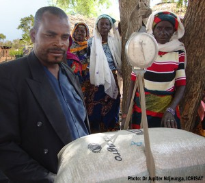 A seed company agent of MANOMA weighing a groundnut bag to ensure that it met the norm of 40 kg.