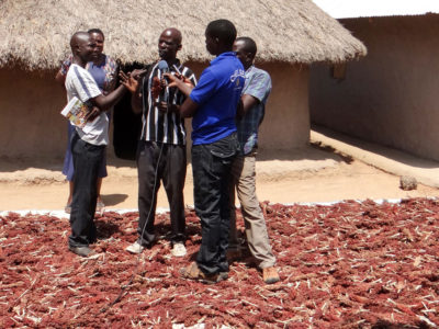 Farmer Martin Lumala (center) explaining a point to the press. Photo: Daniel Ajaku, ICRISAT
