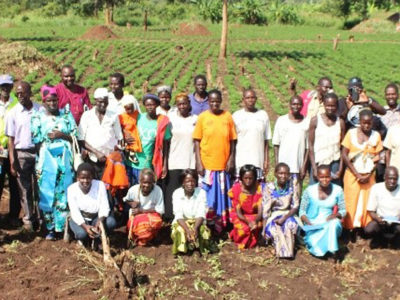 Loyokwo Groundnut Seed Farmer Group. Photo: A Essegbemon, ICRISAT