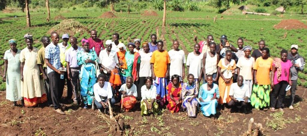 Loyokwo Groundnut Seed Farmer Group. Photo: A Essegbemon, ICRISAT