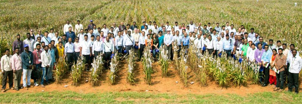 Participants at the pearl millet field day. Photo: S Punna, ICRISAT