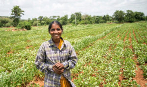 Rameswari Devi, a farmer from Andhra Pradesh is one of the beneficiaries of the sowing app. Photo: S Punna, ICRISAT