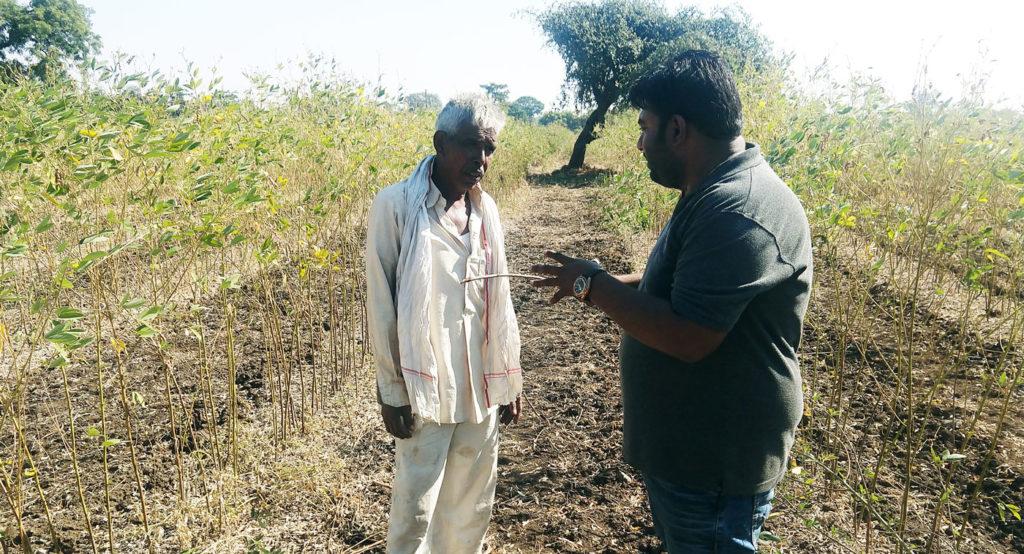 Mr Devashish Chobe, Research Scholar, ICRISAT, interacting with pigeonpea farmer Mr Basweshwara Patil of Gulbarga, Karnataka. Photo: A Tarafdar, ICRISAT