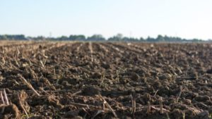 Cultivated soil. Photo by: Jan Kroon / CC0