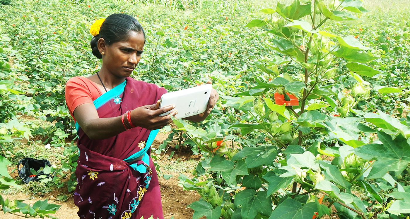 File photo of a farmer using the Plantix app