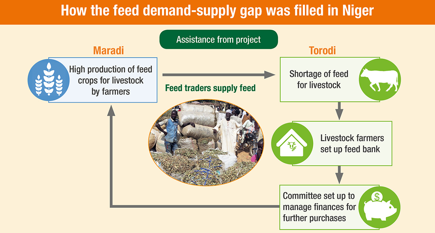 How the feed demand-supply gap was filled in Niger.