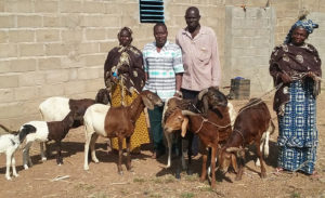 Mr Taparga with his family and their livestock. Photo: Mr SA Traore, INERA