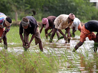 As the corona crisis coincides with the rabi harvest/preparation for kharif sowing season, its impacts on food production and movement through the value chain loom large.