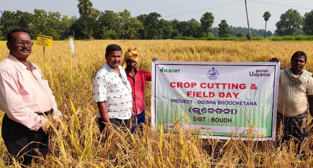 A field demonstration in Boudh district, Odisha. Photo: ICRISAT Development Center
