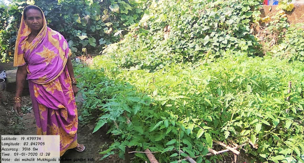 A kitchen garden in Mukhiguda village.