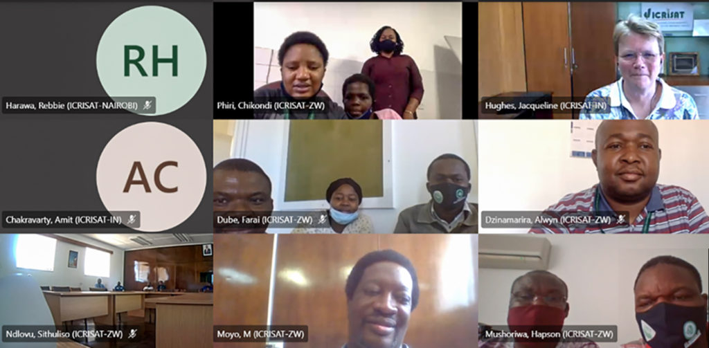 Screenshot of Dr Hughes, Director General, ICRISAT, interacting with staff of ICRISAT Zimbabwe. Photo: G Obiero, ICRISAT