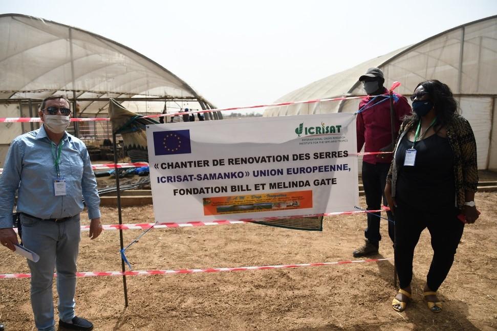 Mr Olivier Lefay and Dr Nadine O Worou, Program Manager, ICRISAT WCA, visit the greenhouses under renovation. Photo: N Diakité, ICRISAT