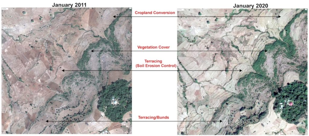 Increase in vegetation cover after watershed interventions. Photo: Dr Murali Krishna Gumma, ICRISAT
