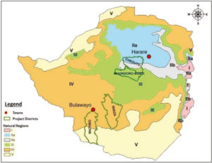 Map of Zimbabwe showing Chegutu; Mhondoro-Ngezi; Matobo and Insiza districts in relation to Natural Regions.