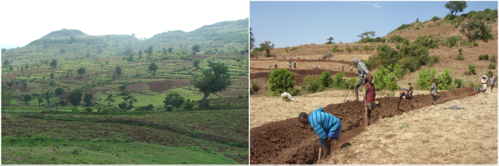 (L)Terraces built voluntarily by farmers in 2012 halt soil erosion and transform the landscape of Aba Gerima watershed in Ethiopia. Credit: Dr Gizaw Desta/ICRISAT, (R) Bekure Melese/WLRC.