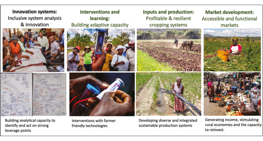 Building absorptive and adaptive capacity, addressing systemic challenges and creating feedbacks from markets to build human livelihoods, dignity and pride.